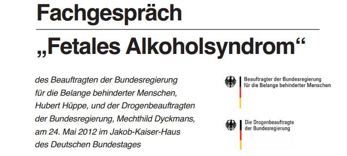 Screenshot Vorblatt zur Dokumentation Fachgespräch Fetales Alkoholsyndrom